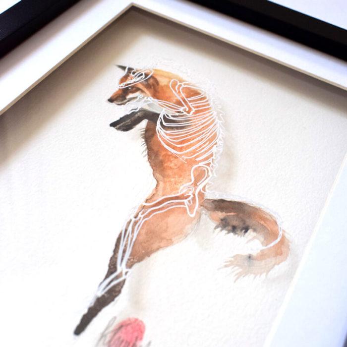 Fox Watercolour Skeleton Anatomy Painting