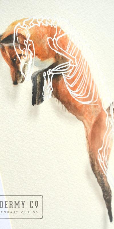 Fox skeleton Painting