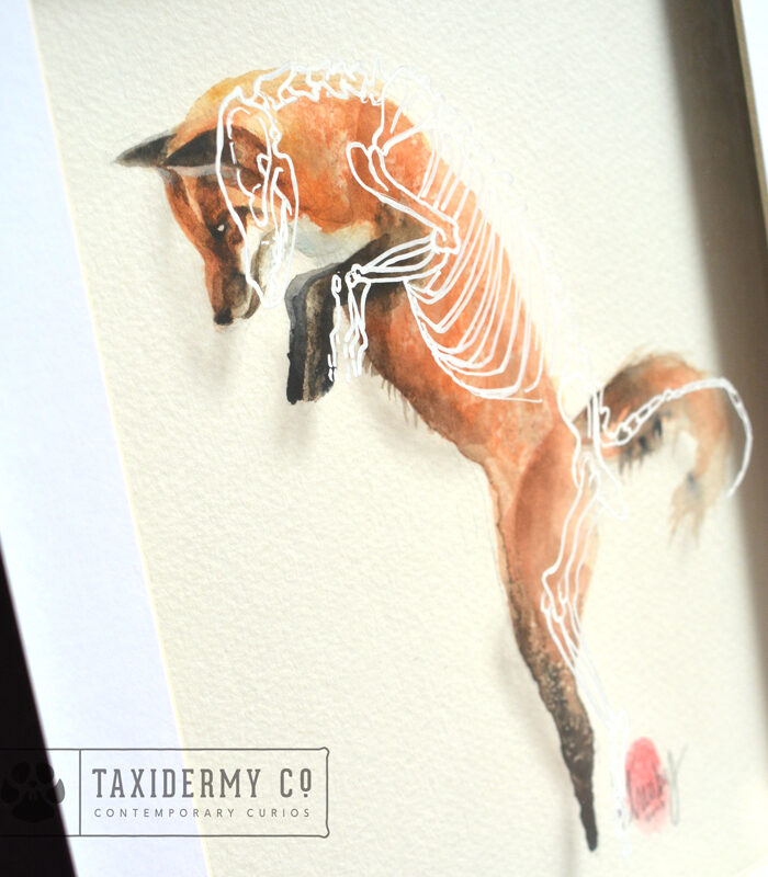 Fox skeleton Painting