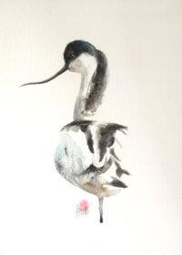 Avocet Watercolour Painting