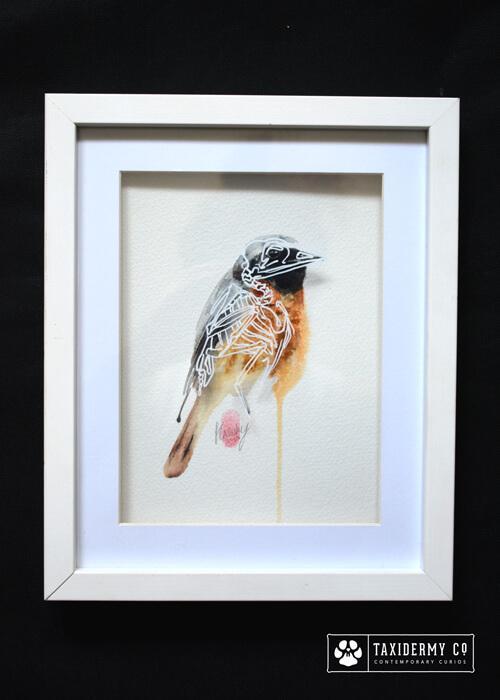 Original Bird Art