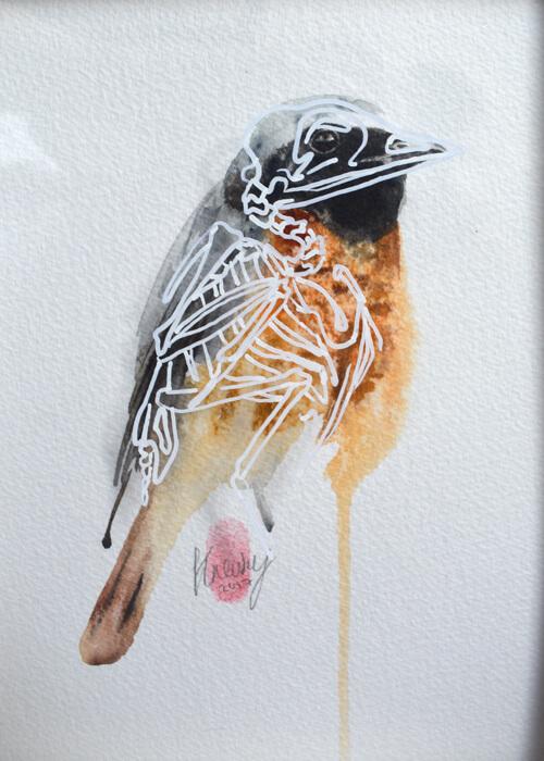 Original Bird Skeleton Art Watercolour For Sale