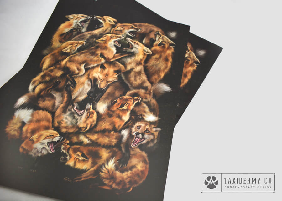 foxforce Wildlife Art Print