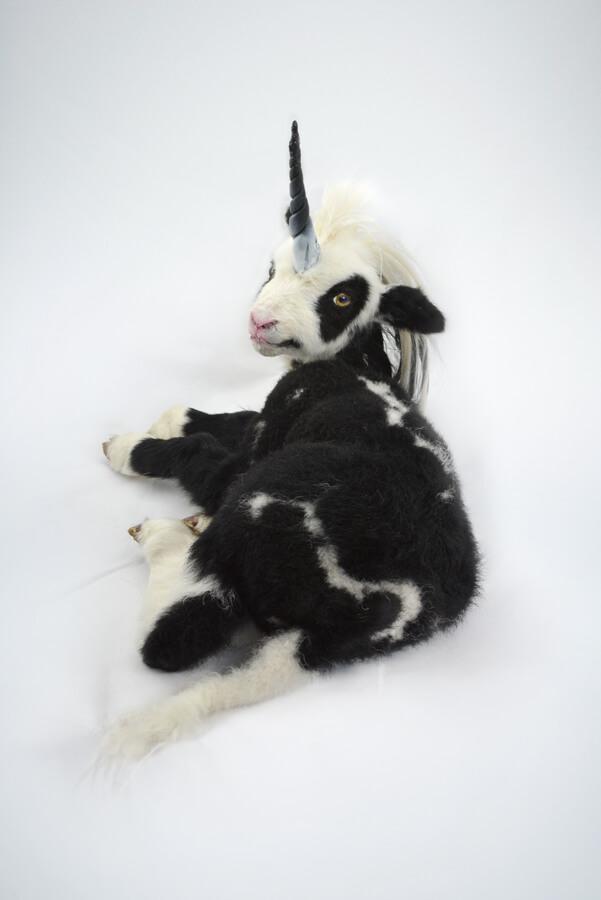Taxidermy Unicorn For Sale