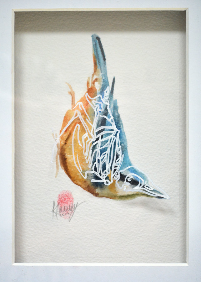 Nuthatch Bird Skeleton Painting