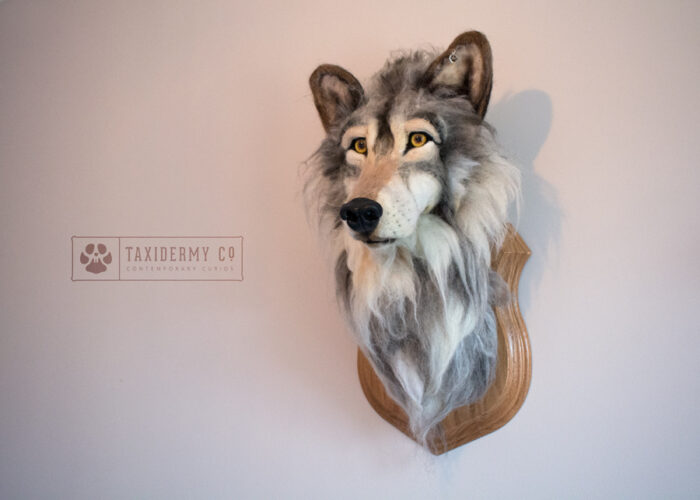 Needle Felted Wolf