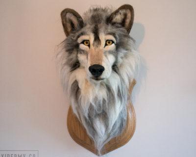 Faux Taxidermy Wolf