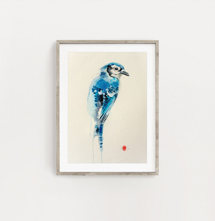 Blue Jay Watercolour Art Painting