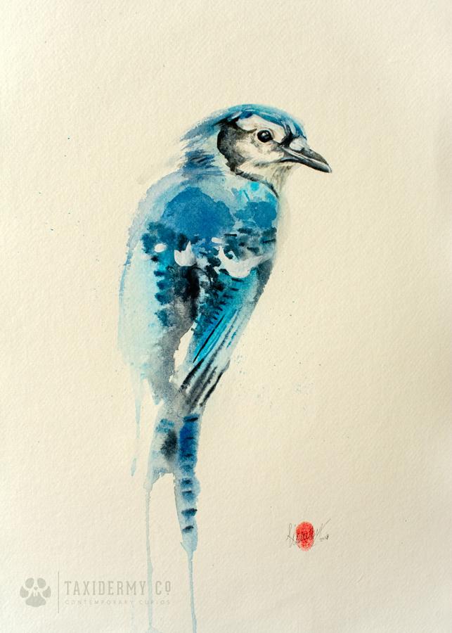 Blue Jay Wildlife Painting