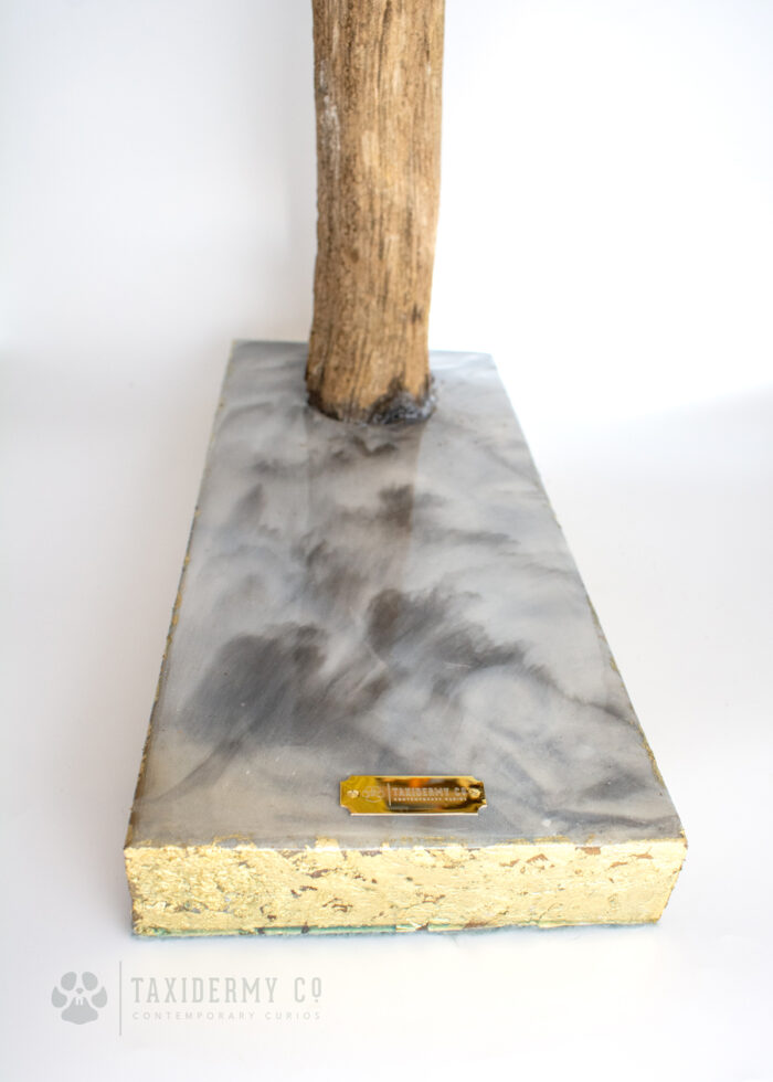 Resin Marble Base